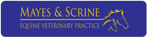Mayes And Scrine Equine Vets logo image