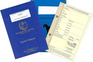 Equine Passport and Microchipping
